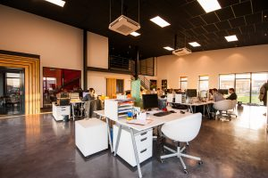 Buyer's Guide: Commercial Office Flooring