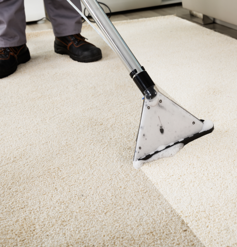 Tips to Prepare for Professional Carpet Cleaning